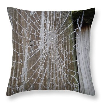 Frosty Web Throw Pillow