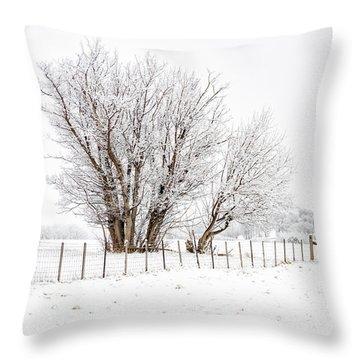 Frosty Winter Scene Throw Pillow