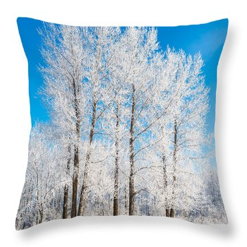 Frosty Wonderland Throw Pillow
