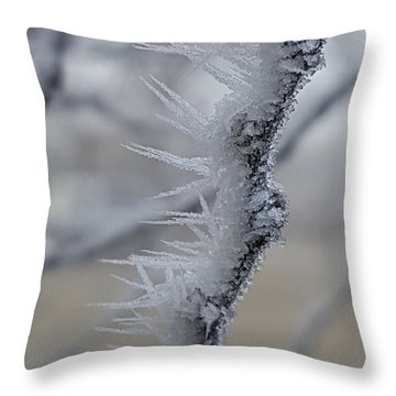 Frozen 2 Throw Pillow