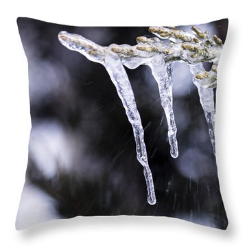 Frozen 3 Throw Pillow