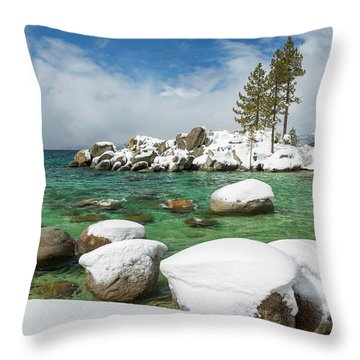 Frozen Aquas By Brad Scott Throw Pillow