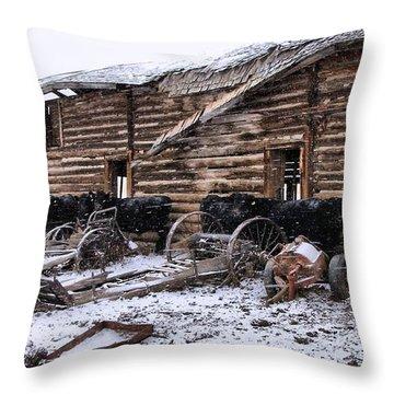 Frozen Beef Throw Pillow