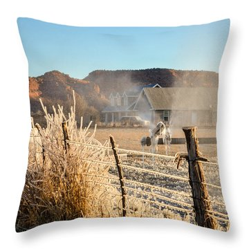Frozen Blue Skies Throw Pillow