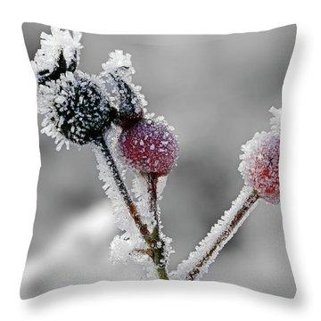 Frozen Buds Throw Pillow