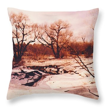Frozen Creek Throw Pillow