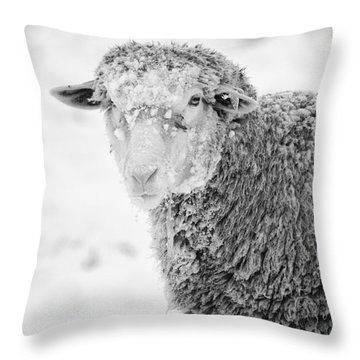 Frozen Dinner Throw Pillow by Mike  Dawson