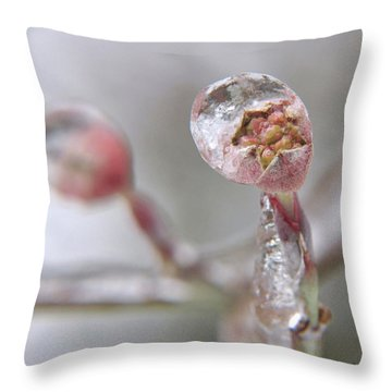 Frozen Dogwood Bud Throw Pillow