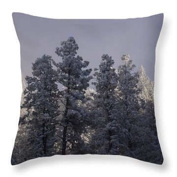 Throw Pillow featuring the photograph Frozen by Ellen Heaverlo