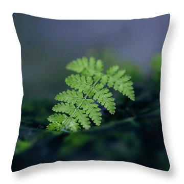 Frozen Fern II Throw Pillow