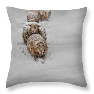 Frozen Fleece Throw Pillow