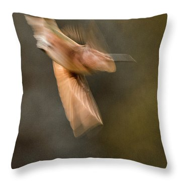 ...frozen Flight Hummingbird.... Throw Pillow