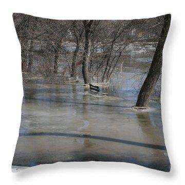 Frozen Floodwaters Throw Pillow