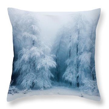 Frozen Forest Throw Pillow by Evgeni Dinev