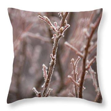 Throw Pillow featuring the photograph Frozen Garden by Ana V Ramirez