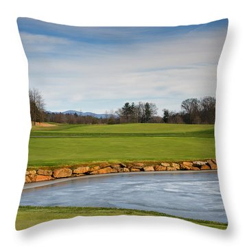 Frozen Gleam Throw Pillow