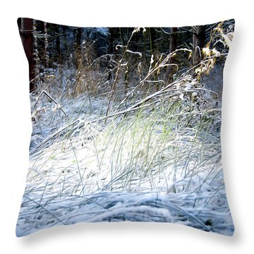 Frozen Grass Throw Pillow by Svetlana Sewell