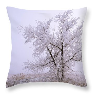 Frozen Ground Throw Pillow by Chad Dutson