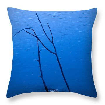 Throw Pillow featuring the photograph Frozen In Blue by Monte Stevens