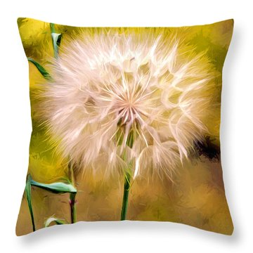 Frozen In Time Throw Pillow by James Steele