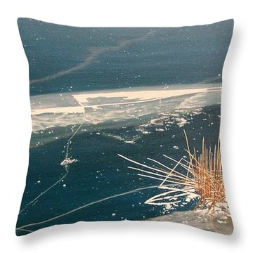 Frozen In Time Throw Pillow by Kenneth M  Kirsch