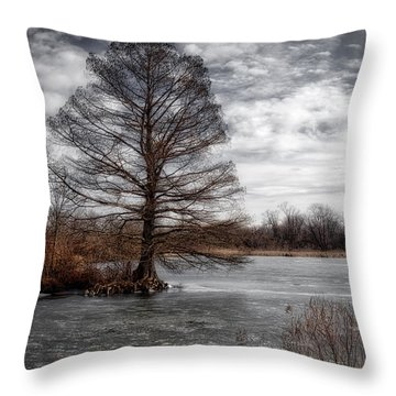 Throw Pillow featuring the photograph Frozen Lake by Michael Colgate