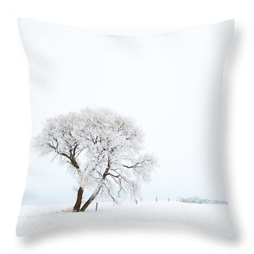 Frozen Morning Throw Pillow by Yvette Van Teeffelen