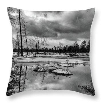 Throw Pillow featuring the photograph Frozen Mullica River by Louis Dallara