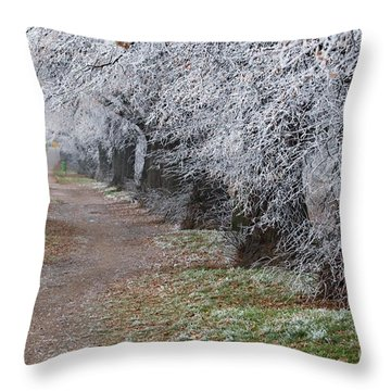 Frozen Pathway Throw Pillow