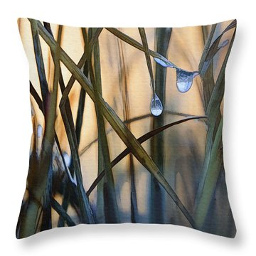 Frozen Raindrops Throw Pillow by Sharon Foster