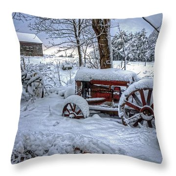 Frozen Relics Throw Pillow