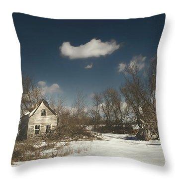 Frozen Stillness Throw Pillow