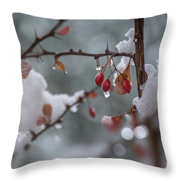 It's Berry Cold Throw Pillow