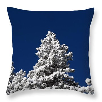 Frozen Tranquility Ute Pass Cos Co Throw Pillow
