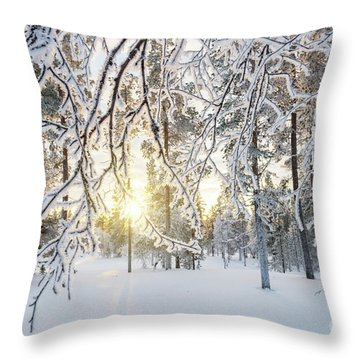 Throw Pillow featuring the photograph Frozen Trees by Delphimages Photo Creations