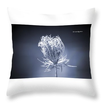 Throw Pillow featuring the photograph Frozen Wildflower by Stwayne Keubrick