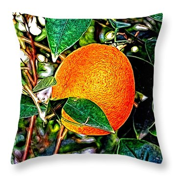 Throw Pillow featuring the photograph Fruit - The Orange by Glenn McCarthy Art