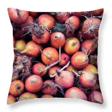 Fruits And Vegetable At Farmer Market Throw Pillow