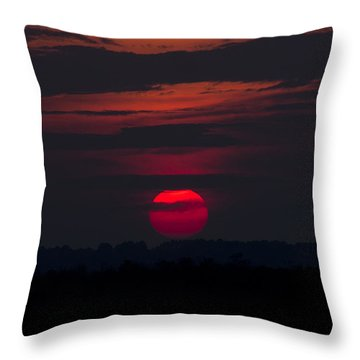 Fuchsia Dusk  Throw Pillow by Nancy Dinsmore