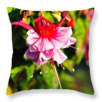 Fuchsia Enjoying The Sunshine Throw Pillow by Kaye Menner