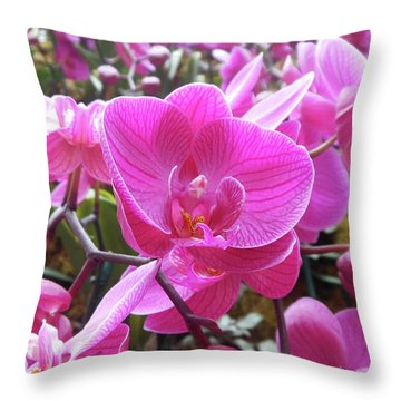 Fuchsia Flower Field Throw Pillow