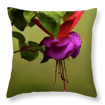 Throw Pillow featuring the photograph Fuchsia Fuchsia by Ann Bridges