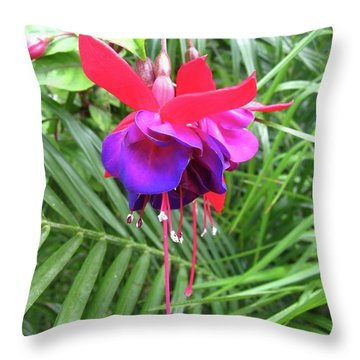 Throw Pillow featuring the photograph Fuchsia by Mary Ellen Frazee
