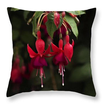 Fuchsia Twins Throw Pillow by Ramabhadran Thirupattur