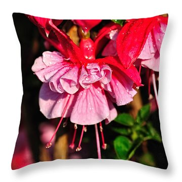 Fuchsias With Droplets Throw Pillow by Kaye Menner