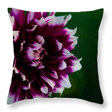 Fuffled Petals Throw Pillow by Cherie Duran