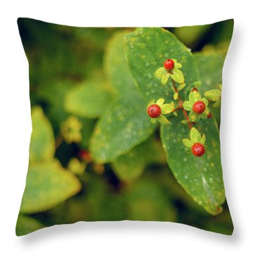 Fall Berry Throw Pillow