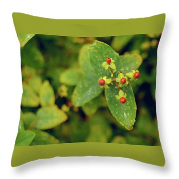 Fall Berry Throw Pillow