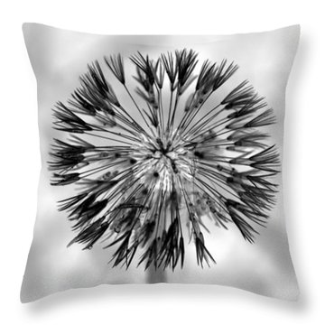 Throw Pillow featuring the photograph Full Dandy by Richard Ricci