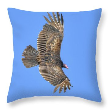 Full Extension Vulture Throw Pillow